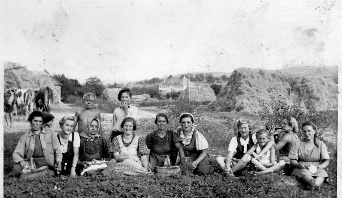 Frauen am Krautacker Loipersbach in den 1940ern Quelle Familie Grössing